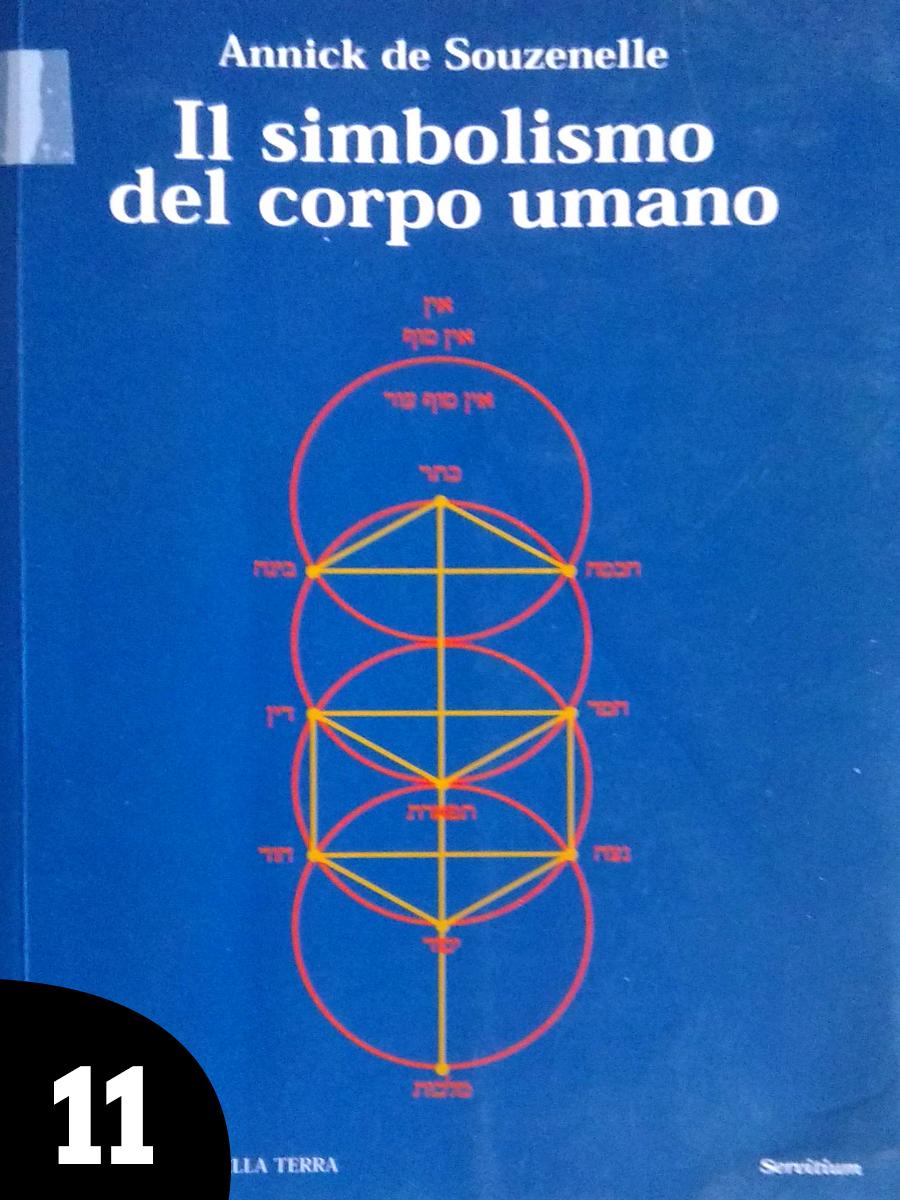 11-libro